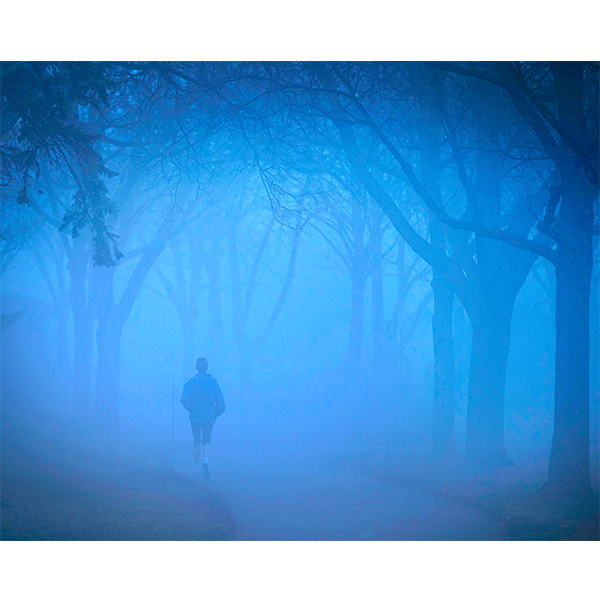 10_17_snapshots_misty_trail_lowres