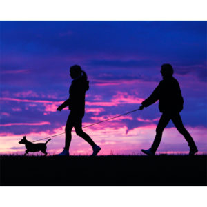 10_18_snapshots_sunset_walk